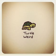 Tiny Turtle, Turtle Love, Amazing Drawings, Easy Drawings, Cute Turtles, Baby Turtles, Kawaii Turtle, Cartoon Turtle, Little Doodles