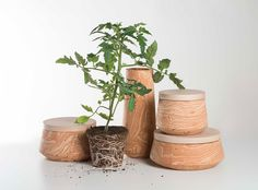 Cascina Ceramic Collection on Behance
