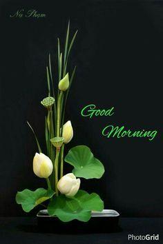 Gud Morning Wishes, Good Morning Wednesday, Morning Greetings Quotes, Good Morning Messages, Morning Prayers, Morning Quotes, Afternoon Messages, Wednesday Wishes, Morning Blessings