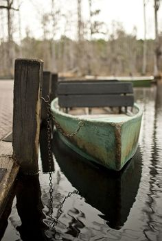 boat ride // cypress gardens, south carolina // just like in the notebook