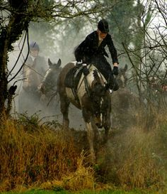 Flying Foxes Sidesaddle Association, Fox Hunting in Ireland. ~ I don't agree with hunting anything, but it's a lovely picture. Most Beautiful Animals, Beautiful Horses, Horse Girl, Horse Love, English Riding, Fox Hunting, All The Pretty Horses, Equine Art, Horse Pictures