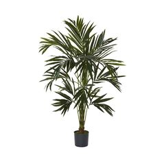 Nearly Natural 6' Kentia Silk Tree Green * Learn more by visiting the image link.