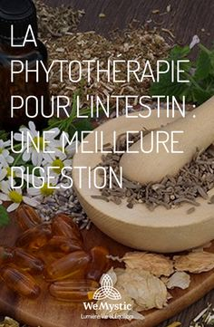 Better Digestion Phytotherapy of the Intestine . Yoga Meditation, Ayurveda, Health Tips, Health Fitness, Boutique, Healthy, Food, Hygiene, Migraine