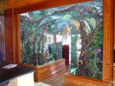 diy aquarium furniture stands are an integral part of every aquatic system. The aquarium stand should be sturdy so that it can bear the weight of a filled a 125 Gallon Fish Tank, 120 Gallon Aquarium, Diy Aquarium, Aquarium Fish Tank, 55 Gallon, Cool Fish Tanks, Saltwater Fish Tanks, Saltwater Aquarium, Aquarium Stand
