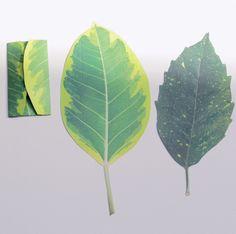 NEO GREEN - leaf letter