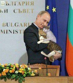 Человек любит животных.И этим все сказано!!!