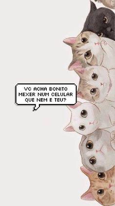 Wallpaper gatinhos fofo