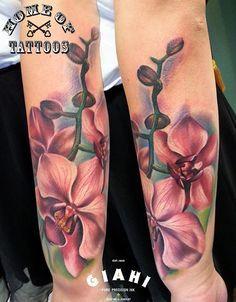 O fantástico realismo das flores, borboletas e animais criados por Sandra…