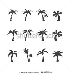 coconut tree icon set, each icon is a single object (compound path), vector eps10