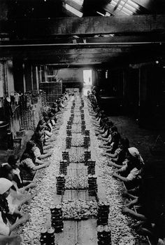Packing squids. Old factory in Bueu, ca. 1924
