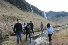 Study Abroad -- University of Iceland. Maybe next fall?