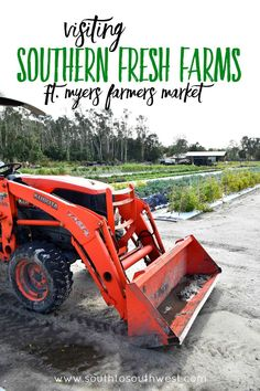 Visiting Southern Fresh Farms Ft Myers Farmers Market from South to Southwest Lifestyle and Travel Blog