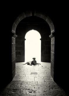 king of light by Kedar Saraf on 500px