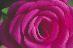 diy-giant-paper-rose-17
