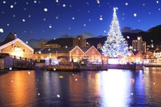This red brick warehouse was built in the Meiji Era and is now a retro spot used as a shopping mall. Snow In Japan, All About Japan, Meiji Era, Red Bricks, Cover Photos, Christmas Lights, San Francisco Skyline, Warehouse, In This Moment
