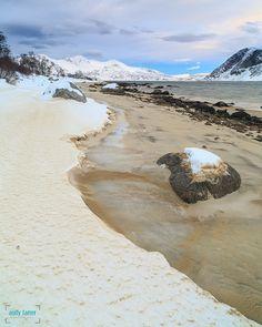 """yeswhitenights: """" Arctic Beach in Norway """""""