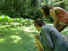 Hiking Forest Park in Portland Oregon (via @Jen Miner)