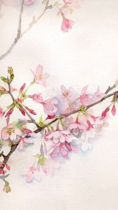 Watercolor pink tree branch