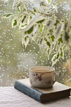 Tea in the rain. Delicate china cup - a good book - warm inside but cold outside - this scene spells peace.