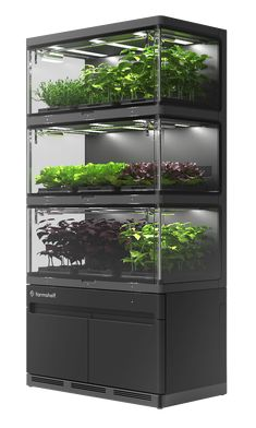 Farmshelf builds smart indoor farms for the home that make it easy to grow produce where you live, work and eat. The bookcase-sized farms are powerful enough to provide pounds of fresh produce every week and small enough to fit into a restaurant. Indoor Hydroponic Gardening, Indoor Farming, Hydroponic Farming, Indoor Vegetable Gardening, Home Vegetable Garden, Home And Garden, Hydroponic Equipment, Horticulture, Indoor Water Garden