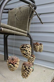 Bird feeder using pine cones, peanut butter and bird feed.