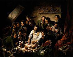 Robert Hooke, Premature Burial, Wellcome Collection, Royal Society, Live Animals, The Spectator, Vegan Animals, Animal Testing, Chiaroscuro