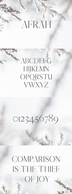Afrah Serif Font is a beautiful serif font. It includes uppercase and number characters. It can be used for headlines, posters, branding, packaging, etc. Modern Serif Fonts, Sans Serif Fonts, Lettering, Typography Fonts, Web Layout, Handwriting Alphabet, Cute Fonts, Brand Fonts, Wedding Fonts