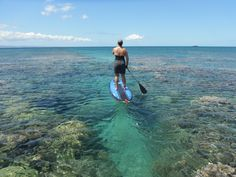 SUP'ing is a great way to see the reef! We do it here at Macaronis! #Resort #Reef #SUPing