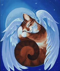 Angel Kitty Sleeping by Nico Niemi I Love Cats, Crazy Cats, Cute Cats, Gato Angel, Pet Loss, Pet Memorials, Cat Drawing, Beautiful Cats, Cat Art