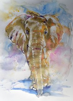 Buy Big elephant in gold, Watercolour by Kovács Anna Brigitta on Artfinder. Discover thousands of other original paintings, prints, sculptures and photography from independent artists. Paintings For Sale, Original Paintings, Original Art, Biggest Elephant, Impressionism Art, Gold Paint, Watercolor Paintings, Watercolour, Pet Birds