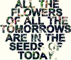 flowers of tomorrow are seeds of today :)