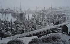 Trawlers Registered in Milford, 1915 – The fishing fleet laid up during the coal strike in July Milford Haven, Civil Wars, Commonwealth, Family History, Wales, New York Skyline, Fishing, English, People