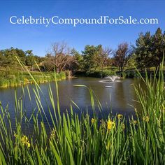 What would be better that taking a swim or going on the boat in your own private lake? @linda_hogan__  www.CelebrityCompoundForSale.com you can do that and much much more! @coldwellbanker @cbcalifornia @cbinsideout