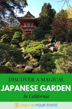Not everyone knows that there's a spectacular Japanese tea garden in San Francisco, complete with pagodas, bridges, koi ponds and a traditional tea house. Tea House Menu, Stepping Stone Paths, Best Bucket List, Famous Beaches, Hidden Beach, Bay City, Over The River, Public Garden, Peaceful Places