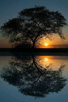 Beautiful sunset and reflection in the water.
