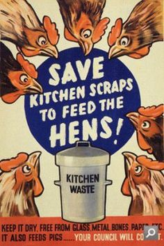 Feed chickens your kitchen scraps (no potatoes!)