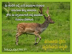 Teluguquotez.in: positive Life quotes in telugu language