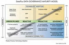 DataFlux Data Governance Maturity Model