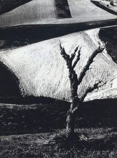 Is there a more Italian photographer than Mario Giacomelli? This aesthetic in both his landscapes and people shots leans towards the abstract with lots of blocky shapes in his pictures of rural Italy and lots of blurr in its people.