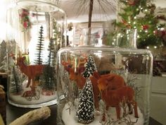 Deer families in large beautiful jars Deer Family, Bottle Brush Trees, White Houses, Home Collections, Open House, Jars, Families, Holiday, Christmas