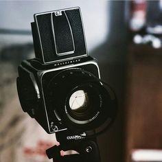 This nice setup belongs to @max.raulffphotography  Tag us in images to get featured  #hasselblad #mediumformat #cameraporn #filmisnotdead  #hasselblad500 #thefilmcommunity #analog #ishootfilm #staybrokeshootfilm #filmphotography #believeinfilm  #filmcommunity #film #buyfilmnotmegapixels #filmcamera  #120 #ilovefilm #iusefilm #filmfeed #grainisgood #filmphoto #filmforever  #keepfilmalive #gearporn #hasselblad_official #hasselbladfeatures #carlzeiss #leefilters