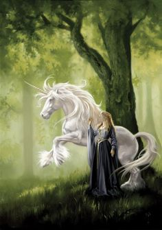 maiden and unicorn. Gives me some character ideas ^^ Unicorn And Fairies, Unicorn Fantasy, Unicorn Horse, Unicorn Art, Magical Creatures, Fantasy Creatures, Pegasus, Unicorn Pictures, Beautiful Unicorn