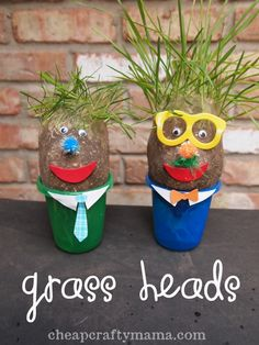 Grass Heads!!!  Fun spring project to make with kids!