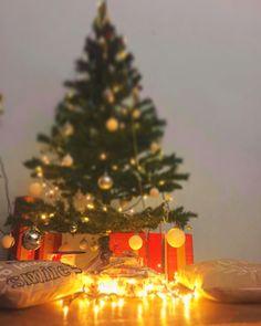 Romania, Christmas Tree, Holiday Decor, Home Decor, Teal Christmas Tree, Decoration Home, Room Decor, Xmas Trees, Christmas Trees