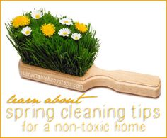 Spring Cleaning Tips/Non-Toxic   The sun is shining, the breeze is cool and you're ready to freshen your home with a few spring cleaning tips. That doesn't mean choking on cleaning fumes or burning your eyes and skin.