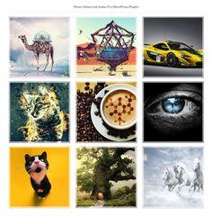 Photo Video Link Gallery WordPress Plugin