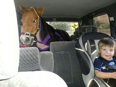 """The winner of this week's competition is Jess Wood from Levinwith this great photo of her son Riley with his pony Maizey going for """"a ride"""". Love it!"""