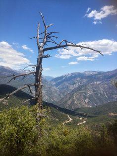 Kings Canyon, California
