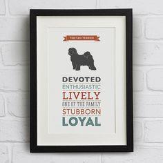 tibetan terrier dog breed traits print by well bred design   notonthehighstreet.com #tibetanterrier