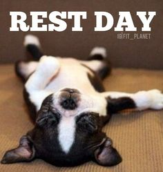 It is important to rest! After working your muscles you need to wait a minimum of 1-3 days of re working that muscles. When you work out and lift weights you are tarring the muscle in your body causing it to break but when you sleep and rest the few days after it is re building your muscle back even bigger! This if why you are sore for several days after working out.